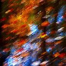 Autumn in Abstract ! by Elfriede Fulda