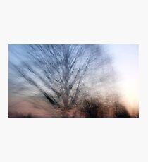 As I Dream  Photographic Print