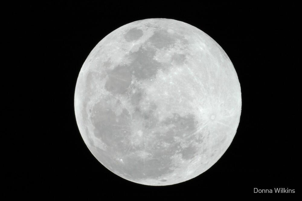Moon Shot by Donna Adamski