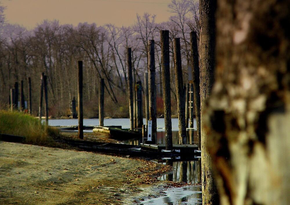 Along the edge by Cricket Jones