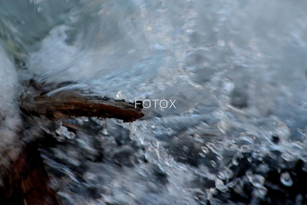 Falic Nature by FOTOX