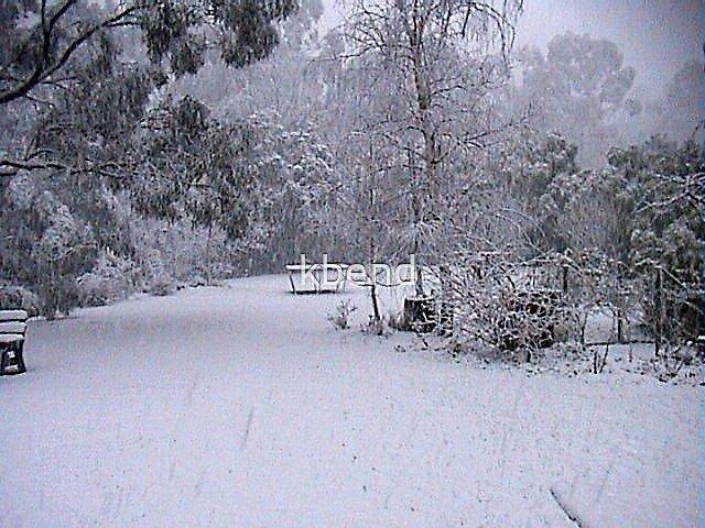 Snow 3 in the Strzeleckis by kbend