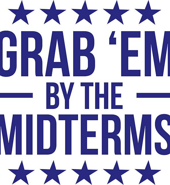 Grab 'Em By The Midterms Sticker by sh9587