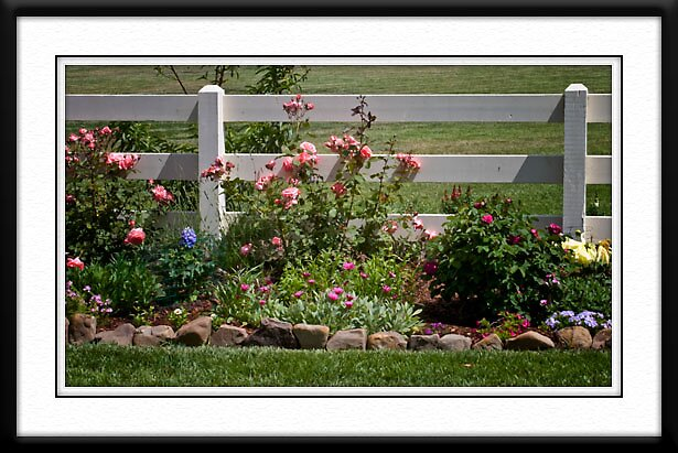 Dawn's Garden by BOB SNELL