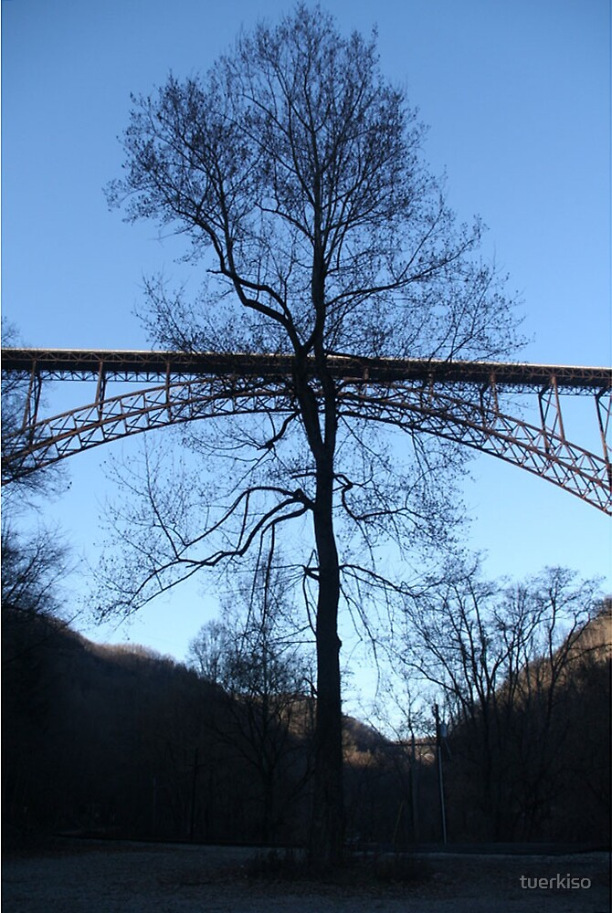 The Bridge and the Tree by tuerkiso