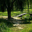 Weeping Willow and foot bridge by Cricket Jones