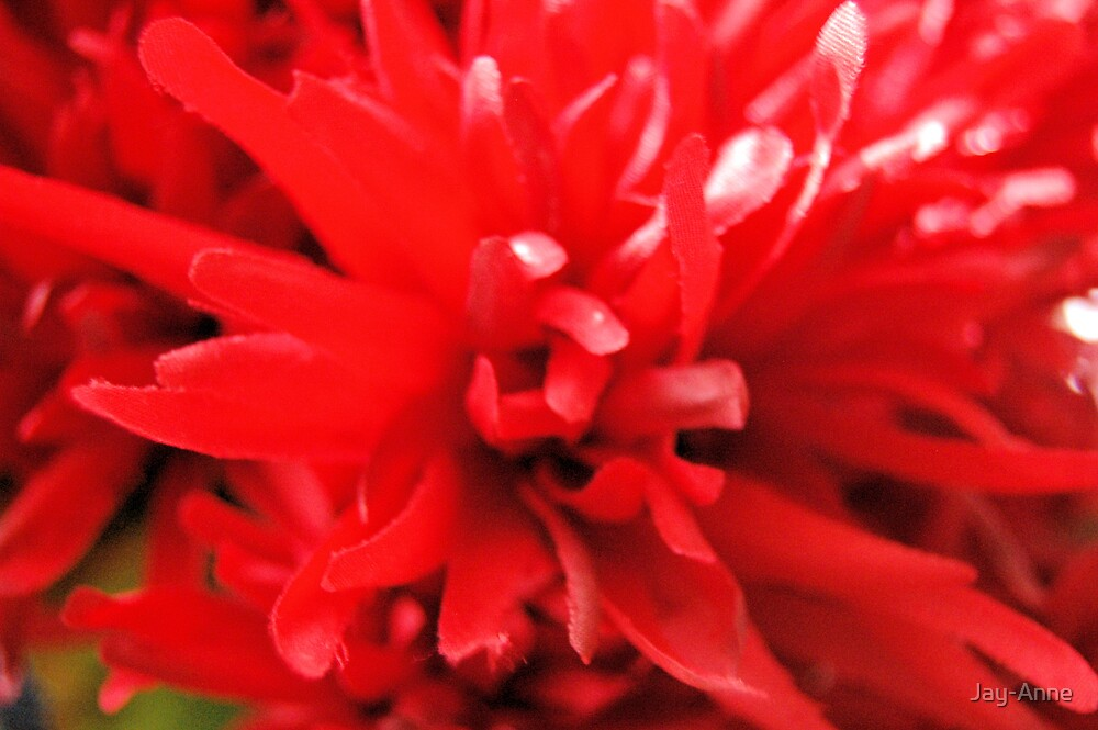 Red Mum by Jay-Anne