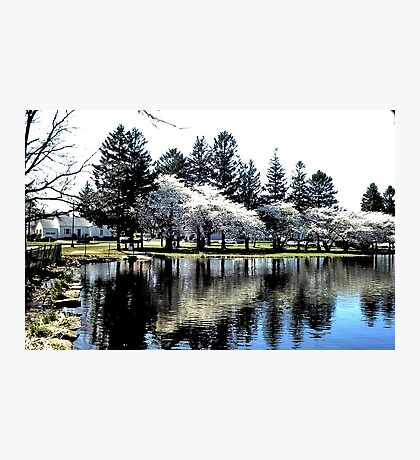 Reflections of spring! Photographic Print