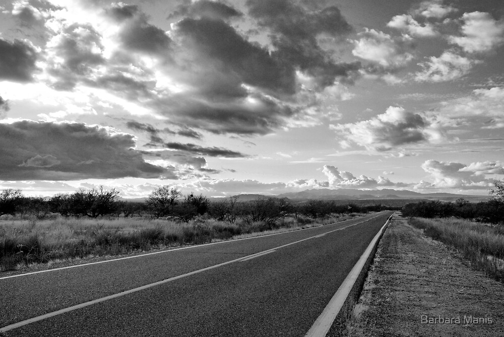 Rollin' Down the Highway by Barbara Manis