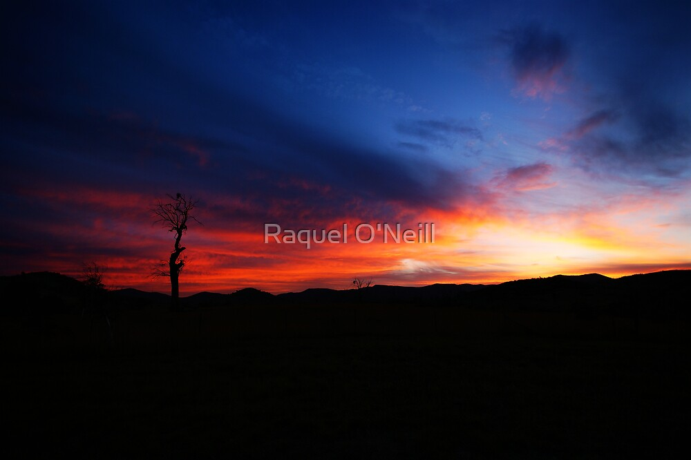 Fire Sky by Raquel O'Neill