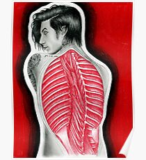 Andy Biersack - Ribcage and Muscle Anatomy Poster