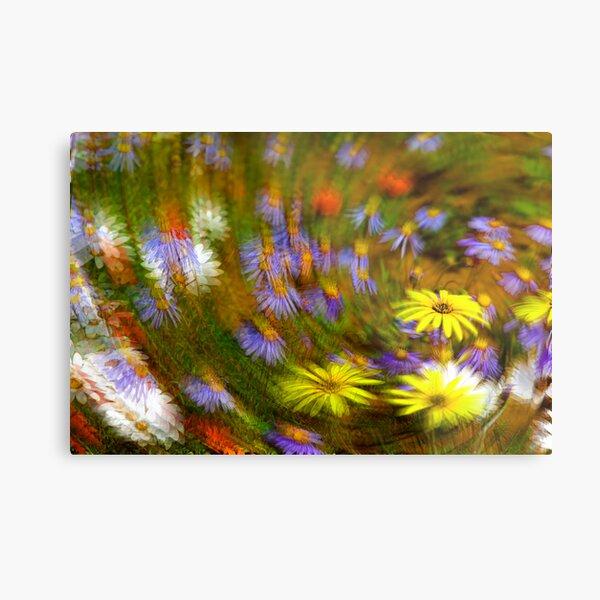 Namaqua Colours Metal Print