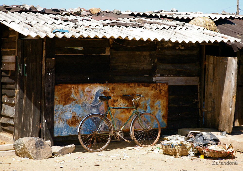Bike in front of a shed by Zarandona