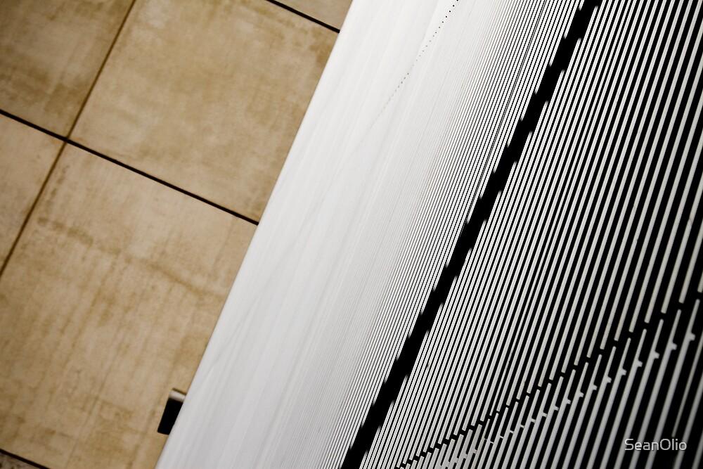 The Window by SeanOlio