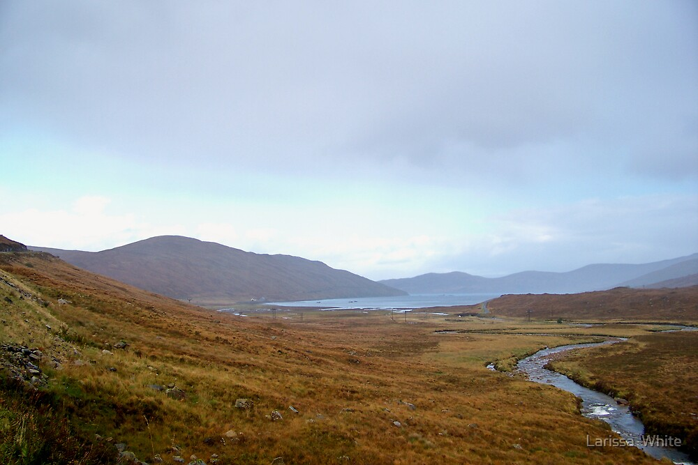 Lost In Scotland by Larissa  Plain