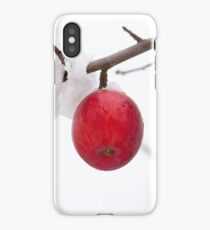 Two Apples in Snow iPhone Case/Skin