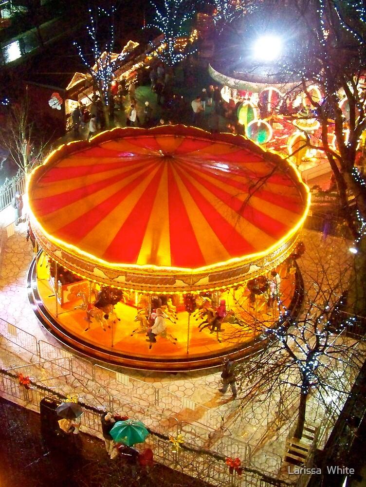 Carousel  by Larissa  Plain