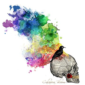 Love Wins Rainbow Splash Skull With Black Raven and Red Rose Limited Edition by TONEIQ