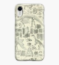 Fossil Chart iPhone XR Case