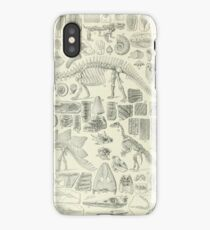 Fossil Chart iPhone Case/Skin