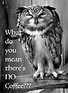 Angry Owl-What do you mean there's NO Coffee??? by Beth Brightman