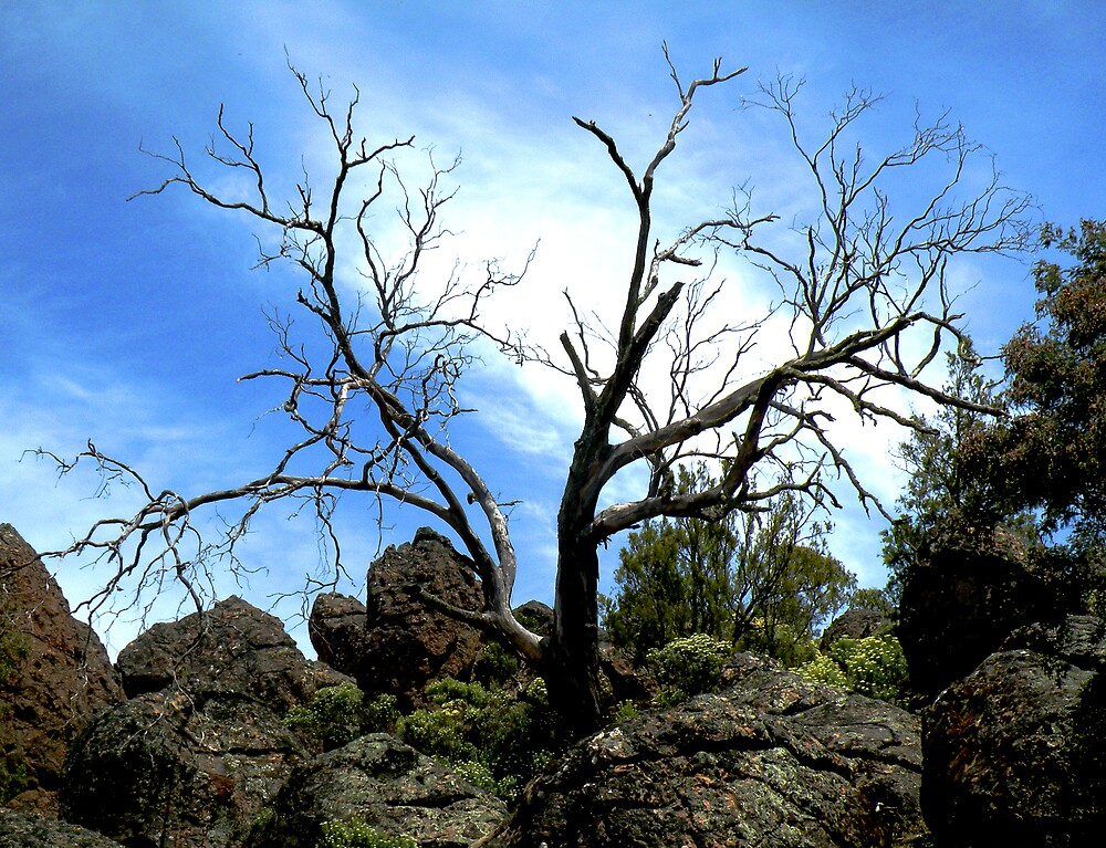 Haunting Hanging Rock by AnnetteW