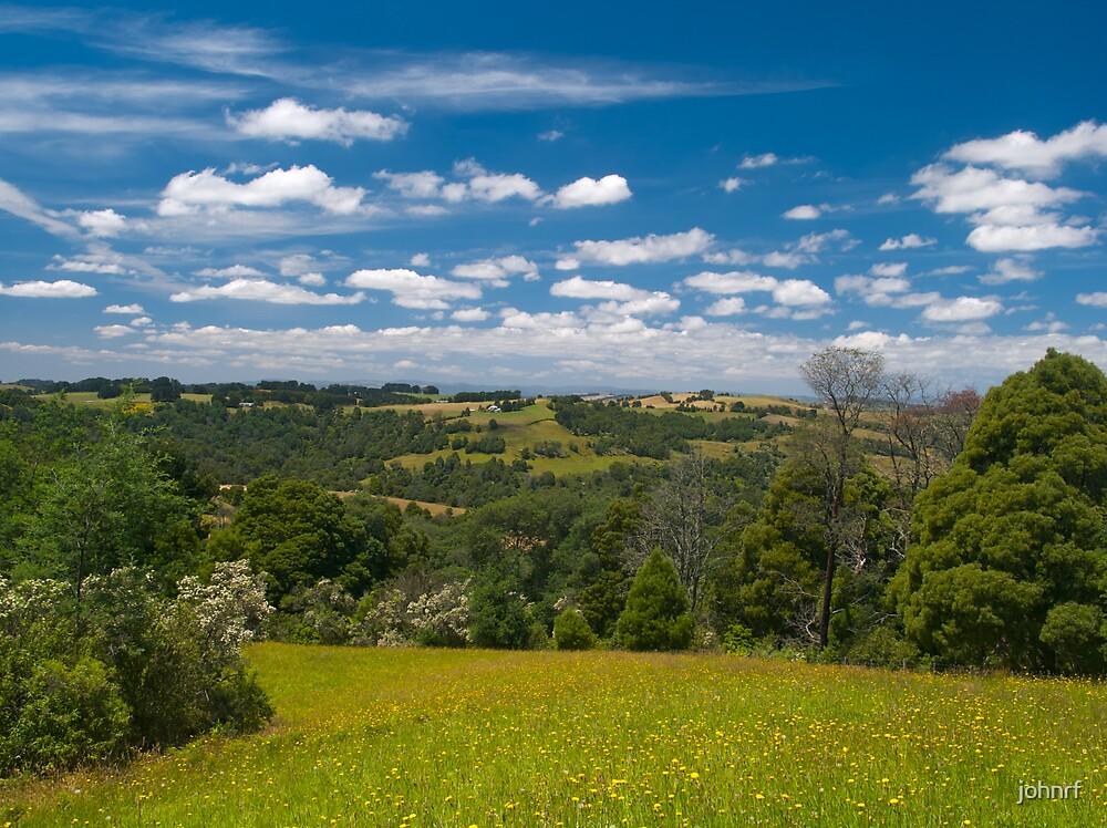 Strzelecki Ranges, taken at Allambee Junction. Victoria. by johnrf