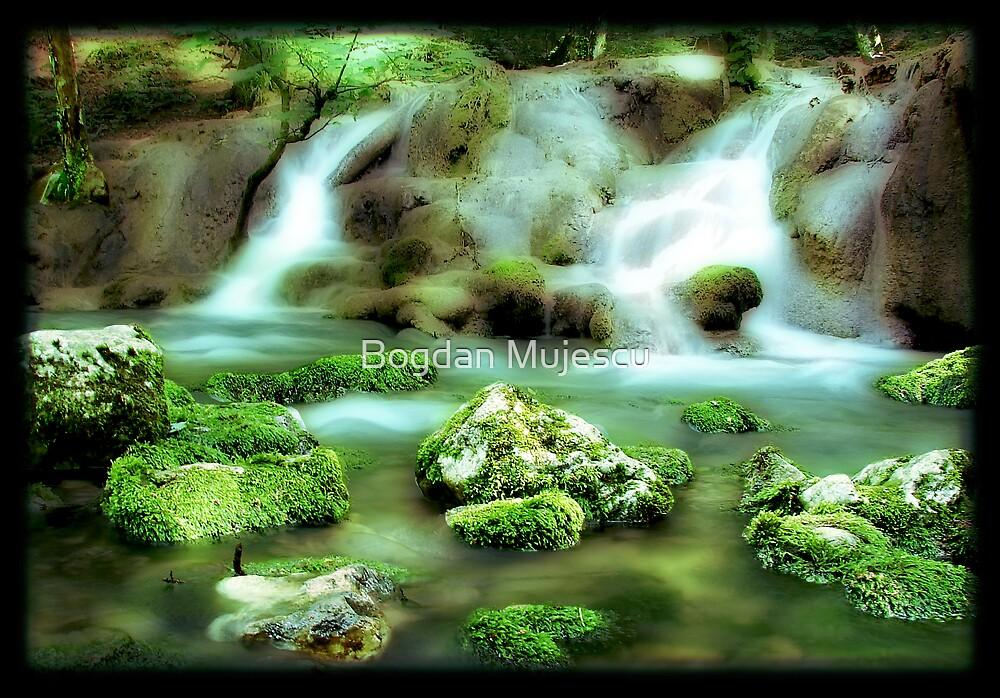 River's Tales by Bogdan Mujescu