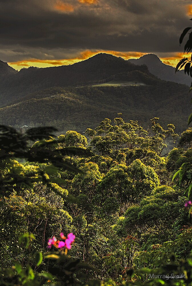 Tallebudgera Valley #2 by Murray Swift