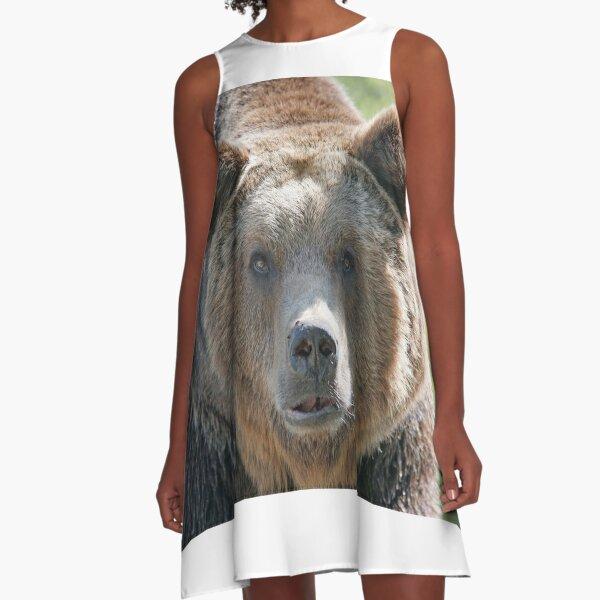 Bear, bear's face, forest bear, terrible bear, bear-to-beard A-Line Dress