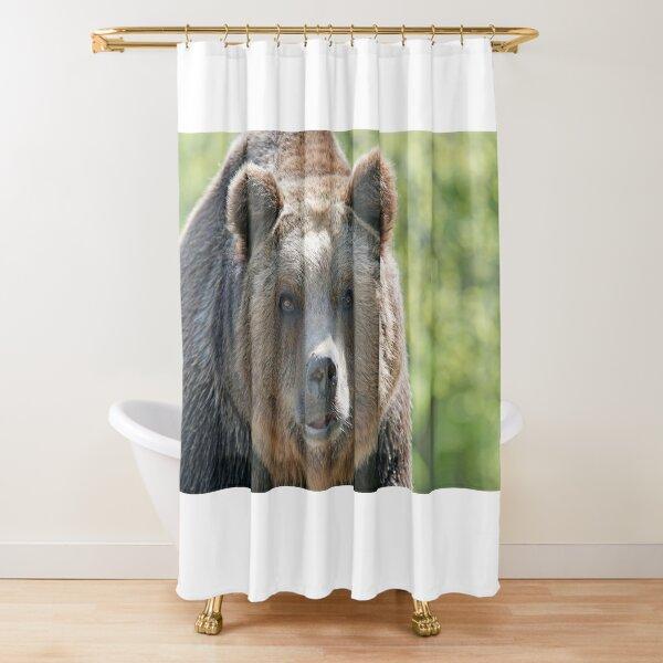 Bear, bear's face, forest bear, terrible bear, bear-to-beard Shower Curtain