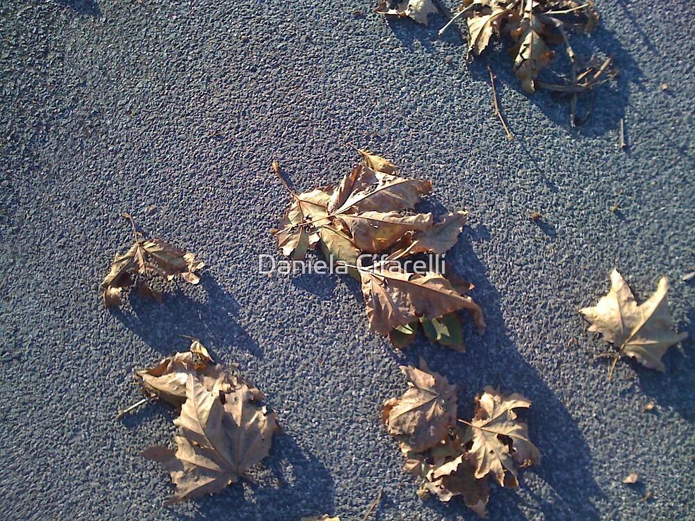 Les feuilles mortes # 2 by Daniela Cifarelli