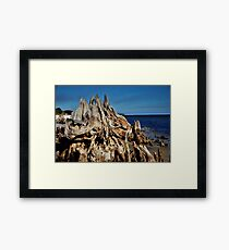 Deeply Rooted Framed Print