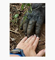 Gorilla Touch Photographic Print