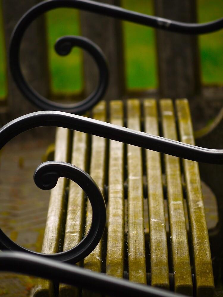 Bench by Rae Tucker
