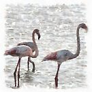 Three Flamingos Watercolor by taiche