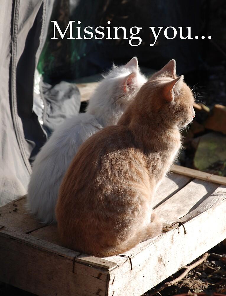 Missing You by jojobob