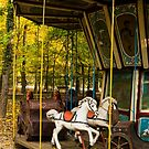 Old Fashioned Merry-Go-Round by Rae Tucker