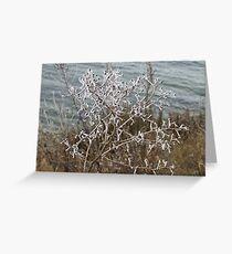 Blackwater Freeze Greeting Card