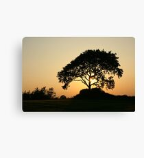 Sunset with a Tree Canvas Print
