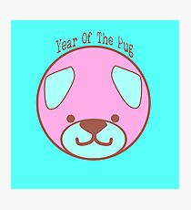 Year of the Pug: Pink Pug on Blue  Photographic Print