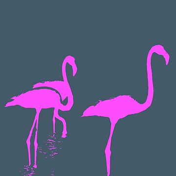 Three Flamingos Pink Silhouette Isolated by taiche