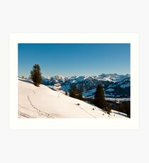 winter scenics Art Print