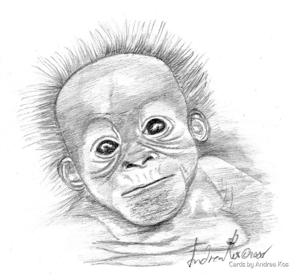 Orangutan Baby by Cards by Andrea Kos