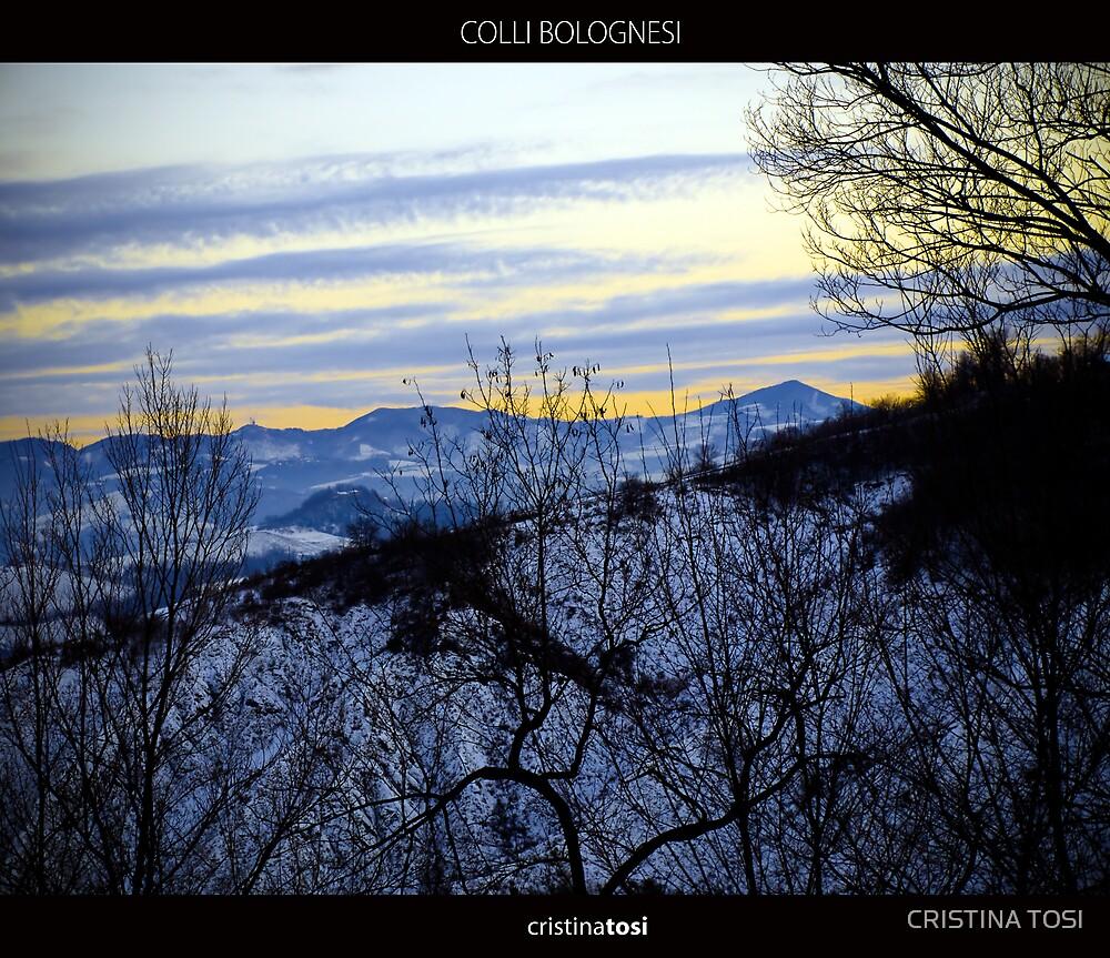 Colli Bolognesi by CRISTINA TOSI