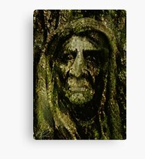 EARTH FATHER Canvas Print