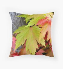 fall colors in spring Throw Pillow