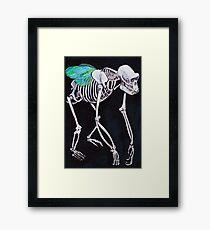 Species skeleton  Framed Print