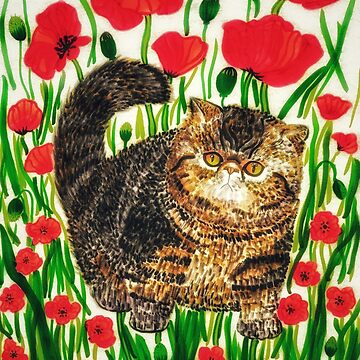 Exotic Short Hair Cat with Poppy Flowers by chippychowmein