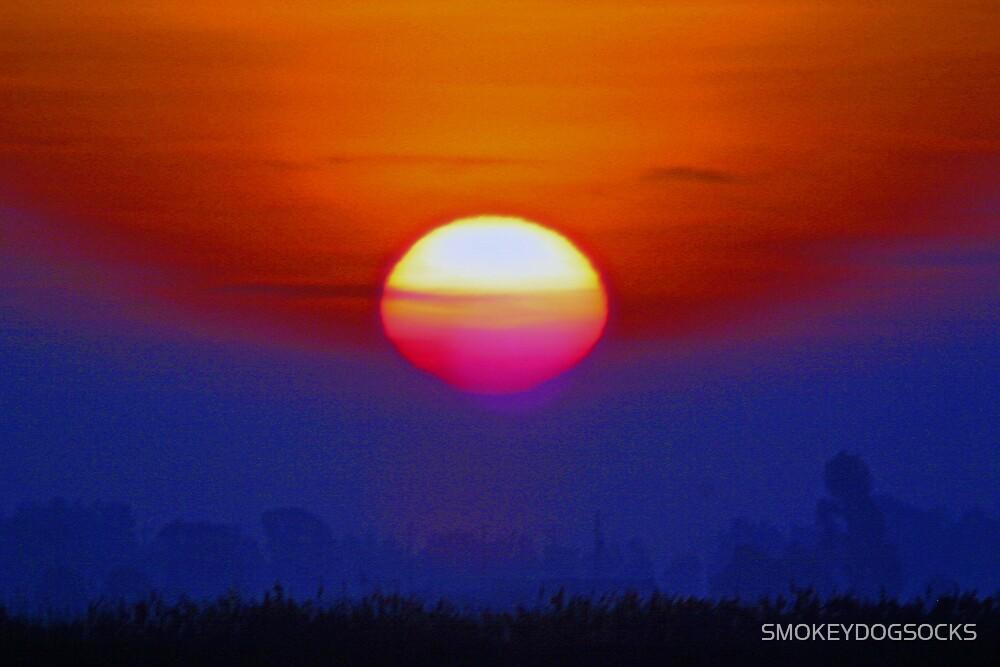 ARRISE FROM THE FOG MY SUN by SMOKEYDOGSOCKS